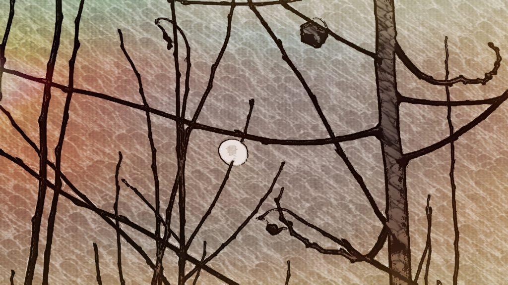 Blatt im Mondschein